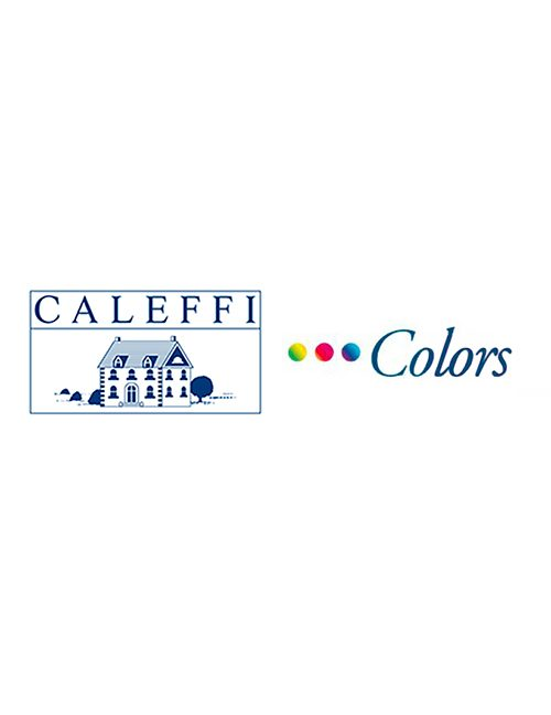 Caleffi-colors-logo